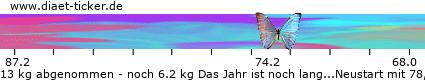 http://www.diaet-ticker.de/pic/weight_loss/132421/.png